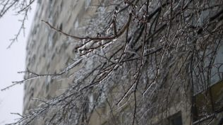 freeezing rain in Bucuresti polei in bucuresti iarna zapada viscol cod portocaliu (43)