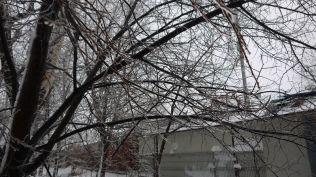 freeezing rain in Bucuresti polei in bucuresti iarna zapada viscol cod portocaliu (71)
