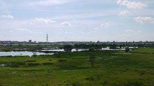 delta bucuresti - lacul vacaresti (579)