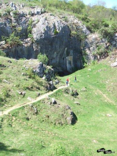 Peștera Ponoarele