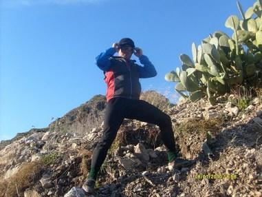 langa cactusi