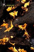 Focul viu de la Terca / Lopatari, Buzau