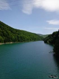 Lacul Paltinu (Valea Doftanei)