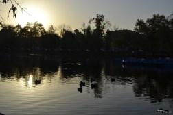 Soare tomnatic la Cluj
