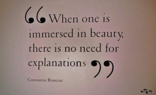Când cineva este scufundat în frumusețe, nu este nevoie de explicații.