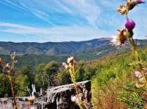 Spre valea Galbenului