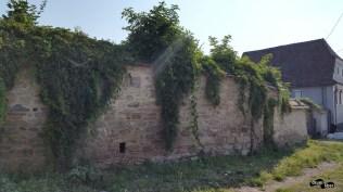 Satul Criț