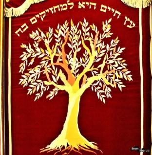 Pomul Vieții
