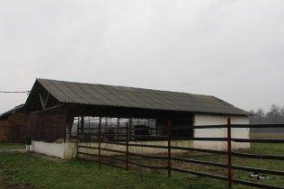 Rezervația de zimbri Neagra - Bucșani (județul Dâmbovița)
