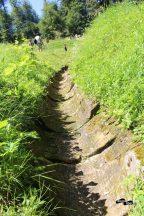 Canalul de drenaj de la daci