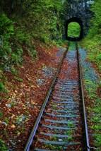 Trenul Oravița Anina