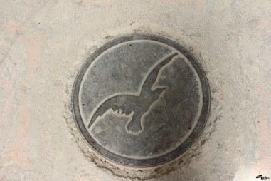 Turul (probabil) pe capacul de canal de la Vulturul Negru din Oradea