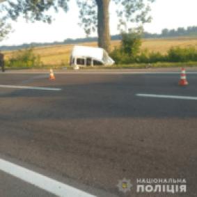 На Яворівщині водія, який в'їхав у дерево, госпіталізували в реанімаційне відділення (фото)