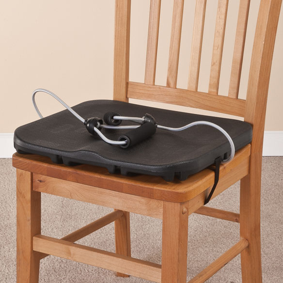 Home Gym Chair Exerciser  Chair Exerciser  Home Gym