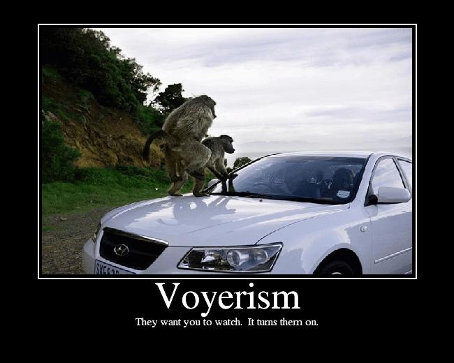 Voyerism