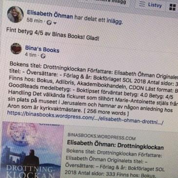 Fin recension av Bina`s Books!