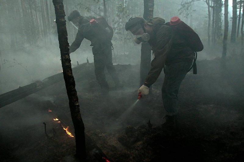 Extinguishing Wildfires 10