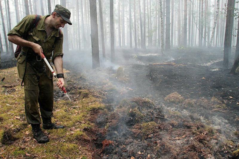 Extinguishing Wildfires 18