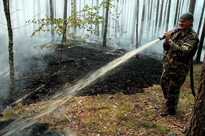 Extinguishing Wildfires 26