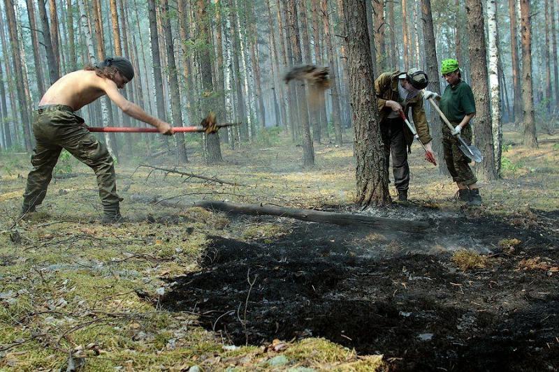 Extinguishing Wildfires 34