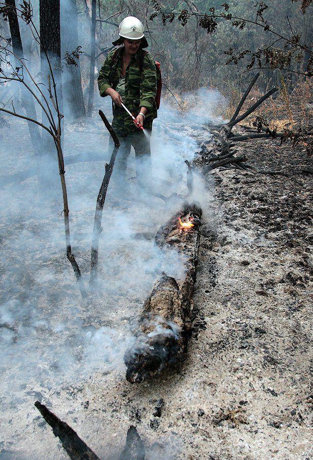 Extinguishing Wildfires 45
