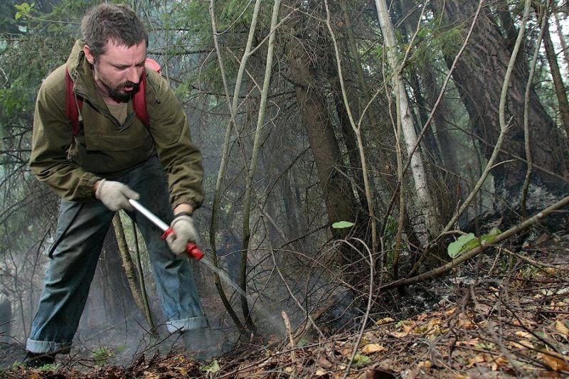 Extinguishing Wildfires 52