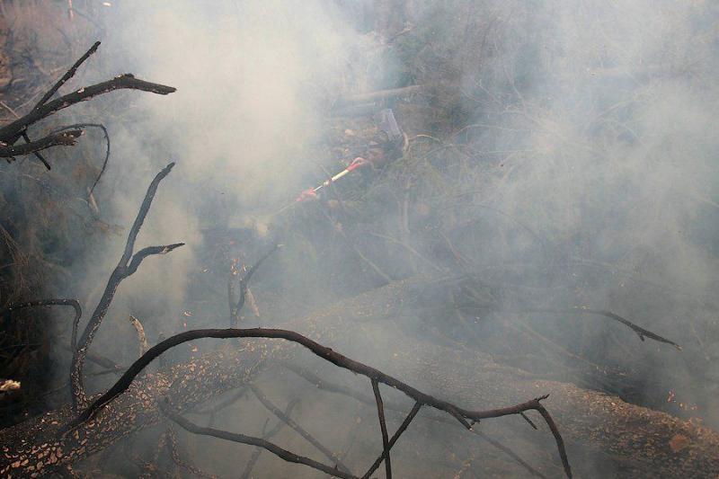Extinguishing Wildfires 57
