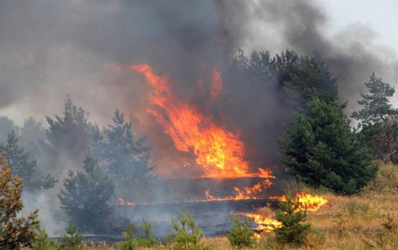Extinguishing Wildfires 76