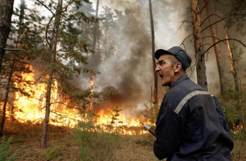 Extinguishing Wildfires 80