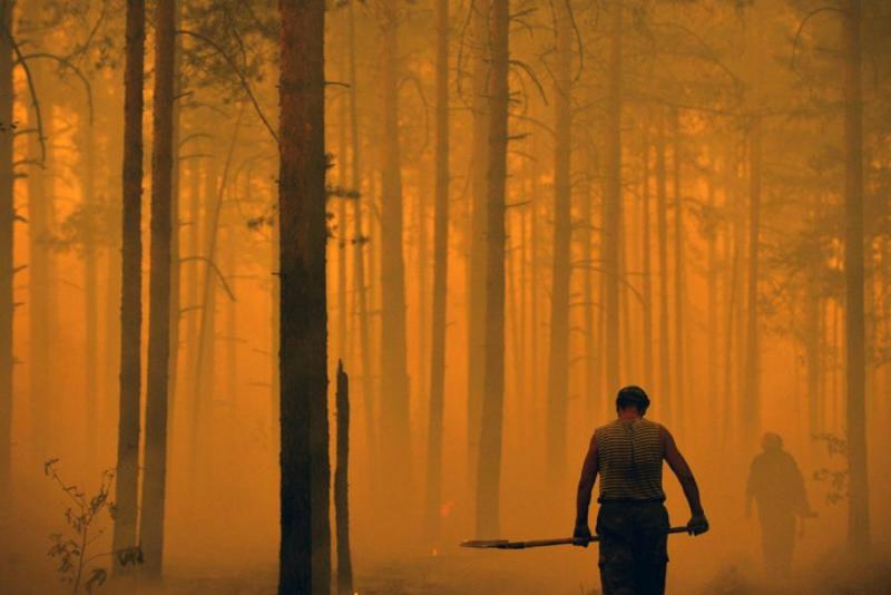 Extinguishing Wildfires 84