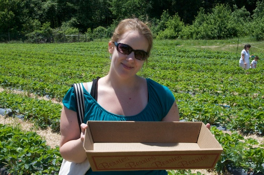 Picking Strawberries in a Gigantic Box