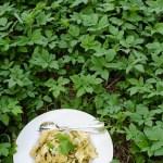 Kirskålspesto-med-löktrav