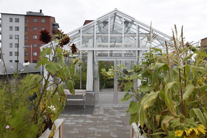 Nordanby ängs växthus