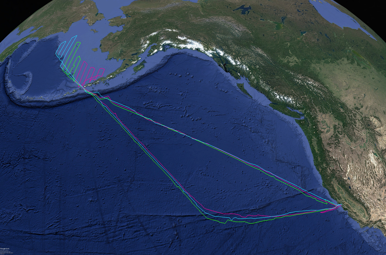Map showing the Bering Sea survey area and the Gulf of Alaska and north Pacific Saildrone sail path.
