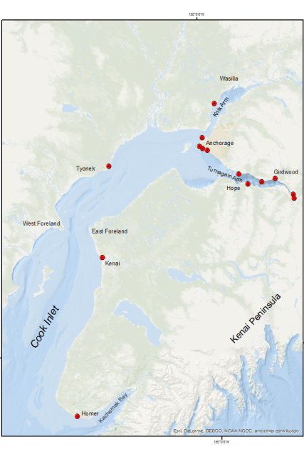 Traditional Public Viewing Stations for Belugas Count!