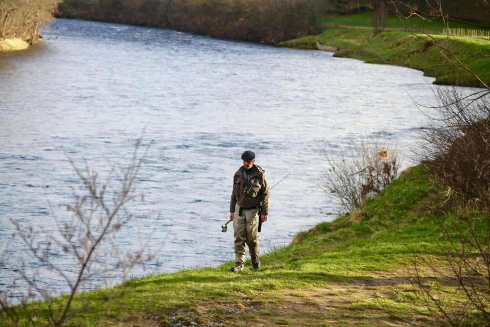 River dee fly fishing