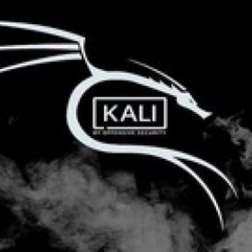 أقوي وأسرع مرجع لتحسين الكالي لينكس (Kali Linux) 2020.4