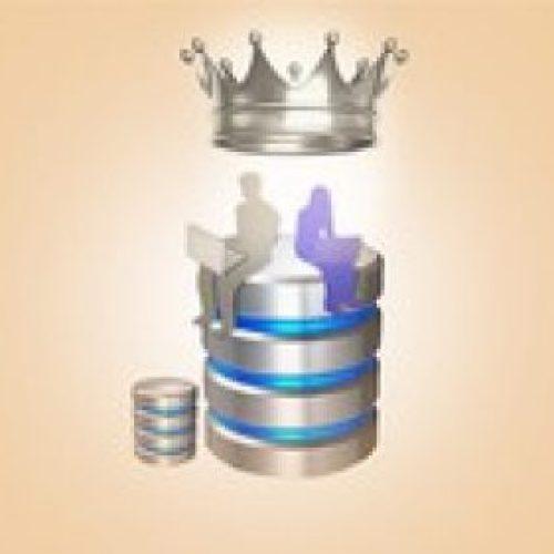 Oracle Veritabanı Yönetimi, Database Administrator(DBA) (1)