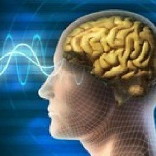 Quantum Physics/Quantum Computing (University Level Course)