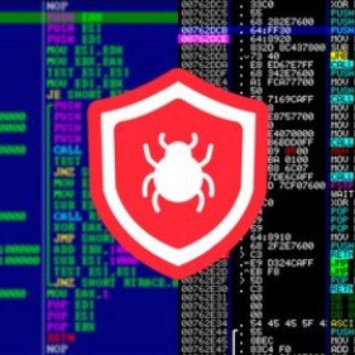 Reverse Engineering, Debugging and Malware Analysis – 2021