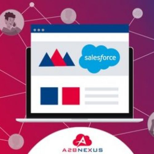 Salesforce Experience (aka Community) Cloud Complete Guide