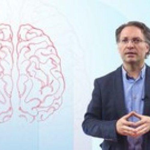 Zihin Haritaları ( Mind Mapping) ile Öğrenmeyi Öğrenelim