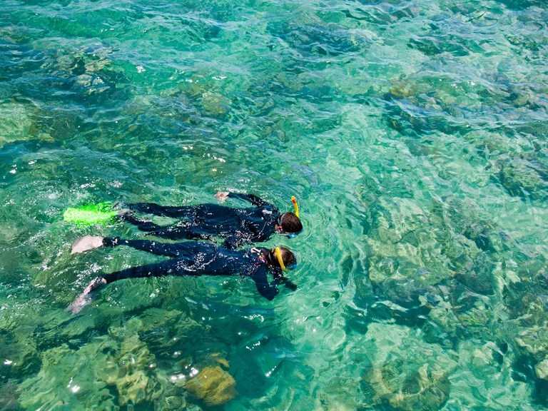 Great Barrier Reef couple snorkeling