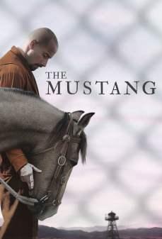 مشاهدة وتحميل فلم The Mustang الموستانج اونلاين