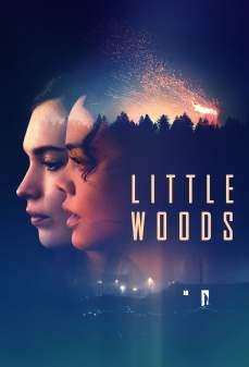 مشاهدة وتحميل فلم Little Woods غابات صغيرة اونلاين
