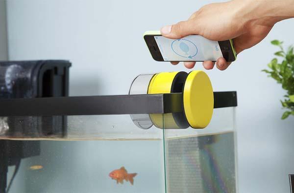 Matey Smart Fish Feeder for Your Aquarium  Gadgetsin