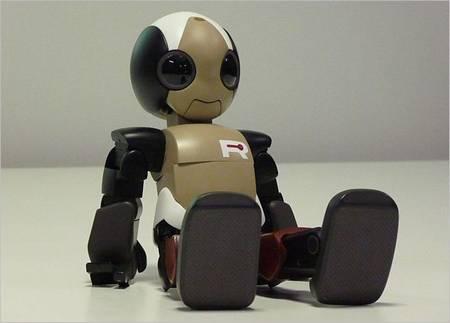 ROPID A Sweet and Flexible Hightech Robot  Gadgetsin