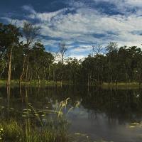 A brief history of Nepal's Chitwan National Park; Tara Michelle Ziniuk; G Adventures