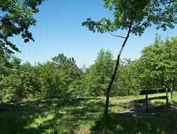 fogelbergsparken