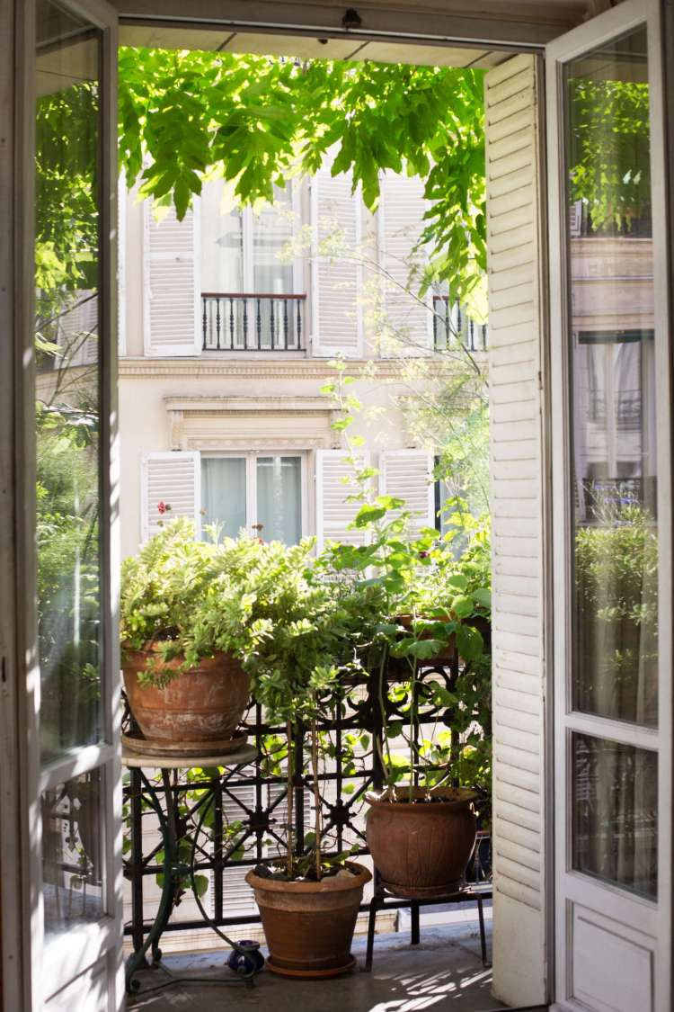 How To Garden Like A Frenchwoman 10 Ideas To Steal From A Paris Balcony Gardenista